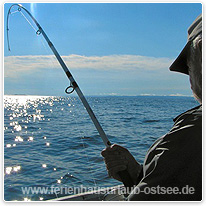 angler, yacht, ostsee