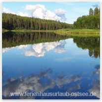 finnland, wald, see